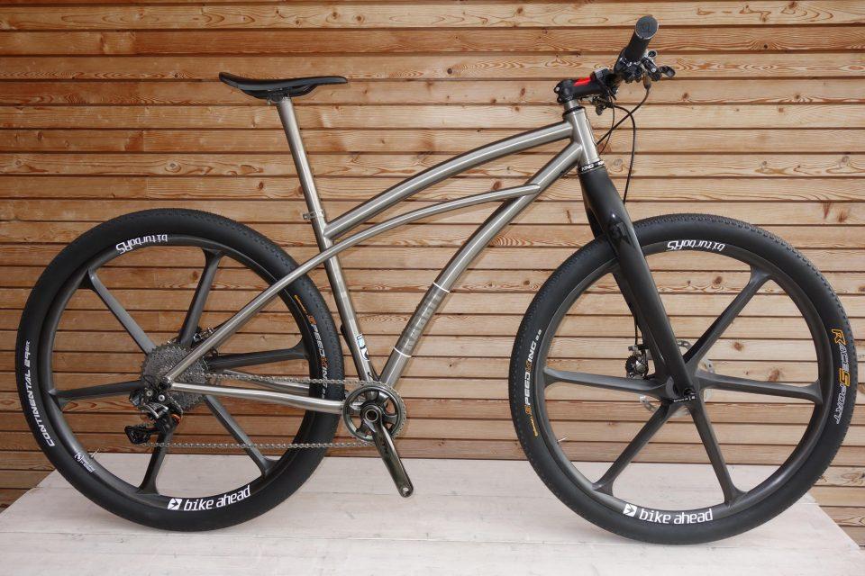 29er_rabbit_cycles_titan_mtb_cruiser_dsc02898