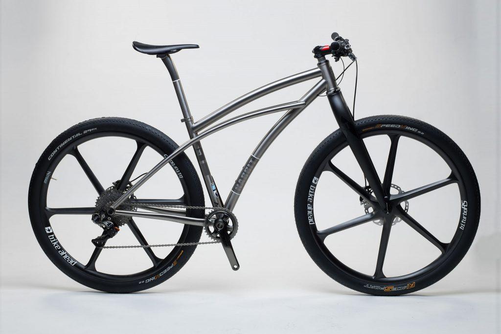 titan_mtb_29_er_cruiser_100_from_rabbit_titan_cycles_bavaria